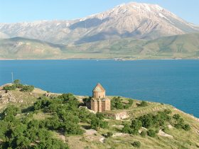 Lake Van the origin of the Turkish Van cat